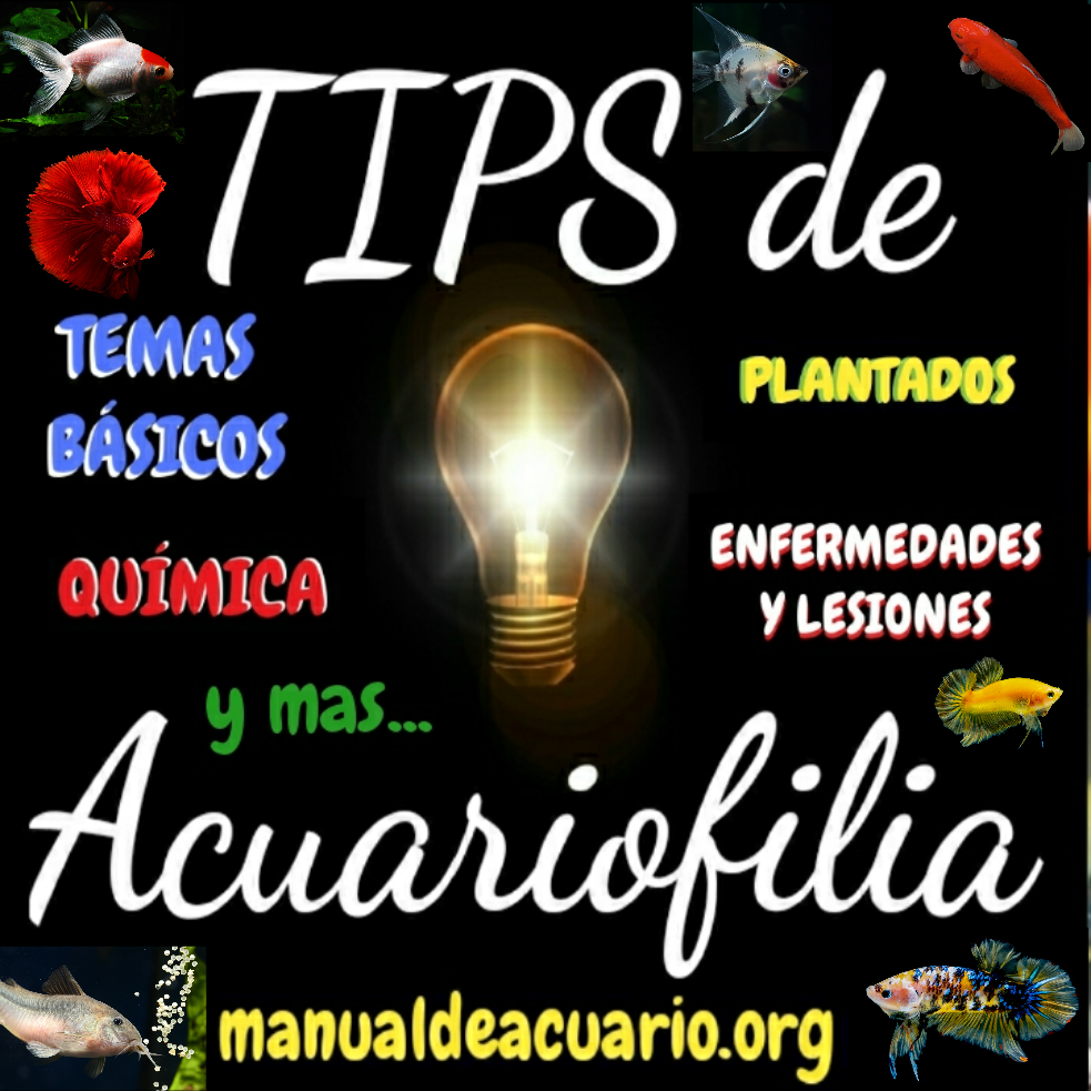 TIPS Y ENLACES para aprender