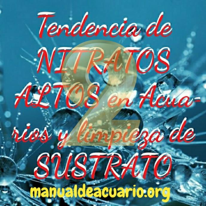 Nitratos altos en acuarios 2