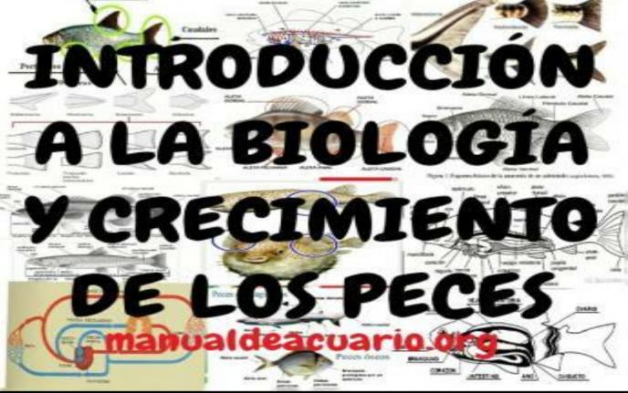 INTRODUCCIÓN A LA BIOLOGÍA Y CRECIMIENTO DE LOS PECES