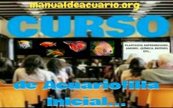 Curso de Acuariofilia gratis de Aqua Internacional Friends