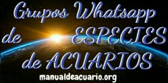 Grupos Whatsapp de especies de acuarios 1
