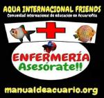Enfermería en acuarios de AQUA INTERNACIONAL FRIENDS