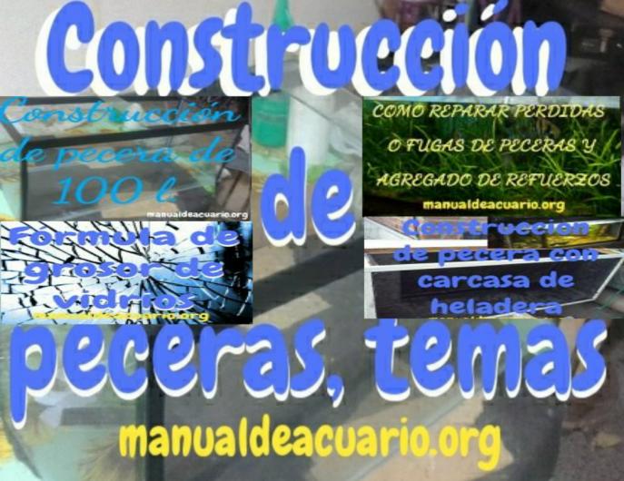 Temas de construcción de irurna para acuario