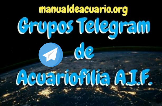 Grupos Telegram de acuariofilia de la comunidad Aqua Internacional Friends