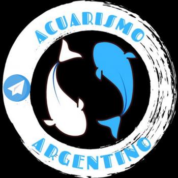 Acuarismo argentino en telegram