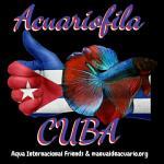 Grupo Whatsapp Acuariofilia Cuba