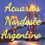 Acuarios nordeste argentino