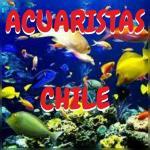 Acuaristas chile 20190408 212004