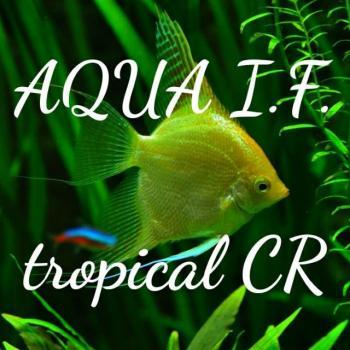 Aqua i f tropical cr 20200601 043802