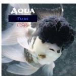 Aqua ticos 20190408 211922