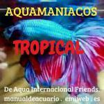 Aquamaniacostropicala i f 20190408 221425