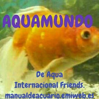 Aquamundo a i f