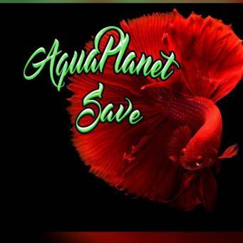 Grupo Whatsapp de acuariofilia Aquaplanetsave