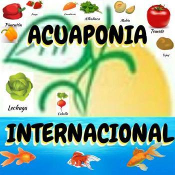 Aquaponia internacional 20190408 222759