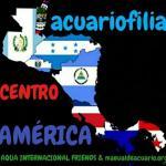Aquariofiliacentroamerica 20190408 220733