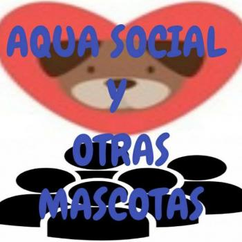 Aquasocialchistesmascota 20190408 224437