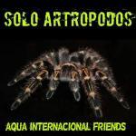 Artropodos sudamericanos 20190408 224654