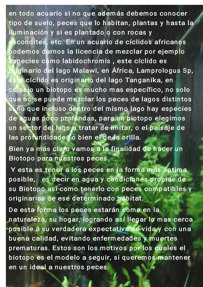 Biotopo 2