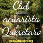 Club acuarista queretaro 20190408 223223