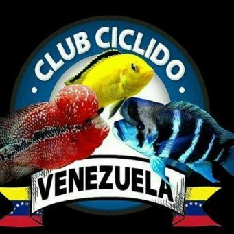 Club ciclido venezuela