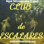 Club de escalares a i f 20190408 222256