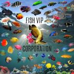 Grupo Whatsapp de acuariofilia Fish of world vip corp