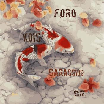 Foro kois y carassius 20190408 222240