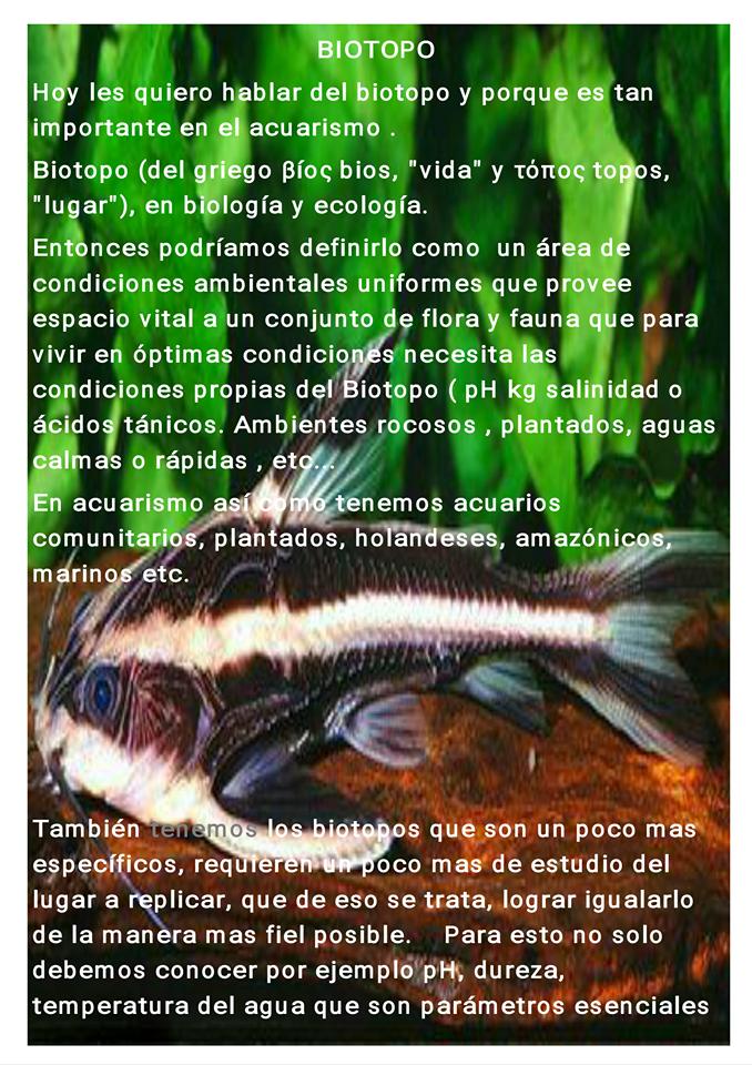 Biotopo 1