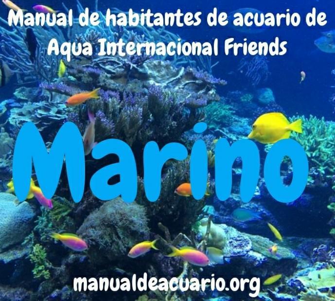 Mi primer acuario Marino