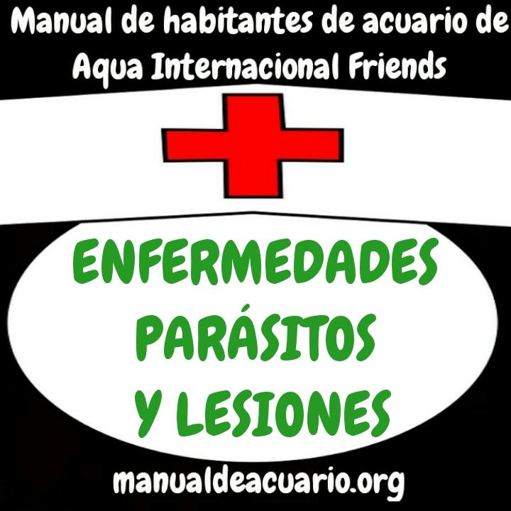 http://www.manualdeacuario.org/paginas/foro/enfermedades/