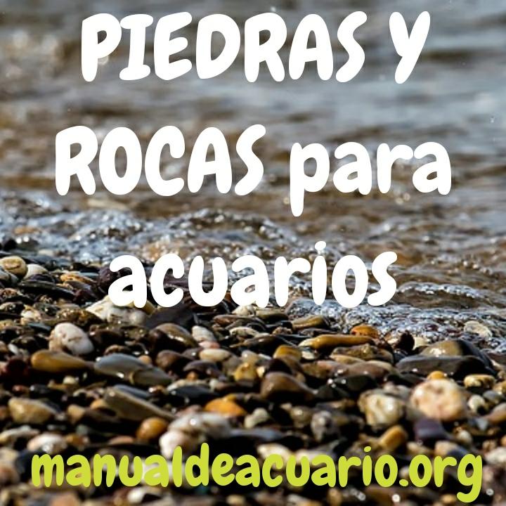 Piedras y rocas para acuarios