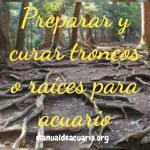 Preparar y curar troncos y raíces para acuarios