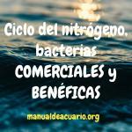 Ciclo del nitrógeno, bacterias beneficas y comerciales