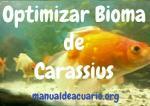 Optimizar bioma de Carassius