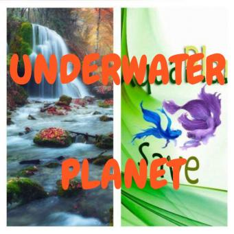 Grupo Whatsapp UNDERWATER PLANET