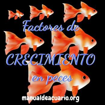 Factores de   CRECIMIENTO  en peces