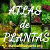 atlas de plantas de acuario