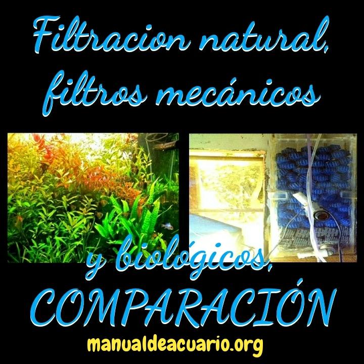Filtración natural con plantas contra filtración comercial
