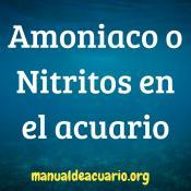Amonio o.Nitritos en el acuario