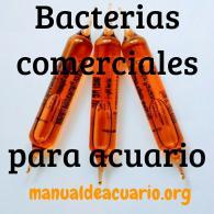 bacterias comerciales para acuario