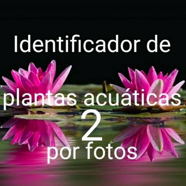 Identificador de plantas por foto del atlas de manualdeacuario.org