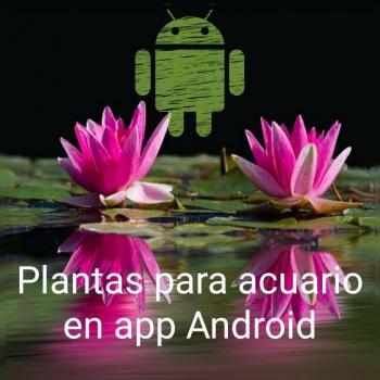 Plantas para acuario en aplicación Android