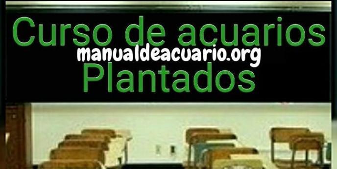 Curso de acuarios plantadosl de acuariofilia de Aqua Internacional Friends
