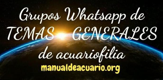 Grupos Whatsapp de temas generales de acuariofilia