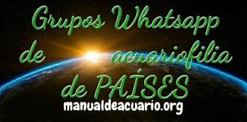Grupos Whatsapp de acuariofilia de paises determinados 1