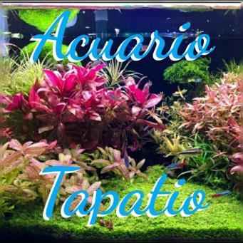 Acuario Tapatio