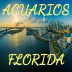 Grupo Whatsapp Acuarios FLORIDA