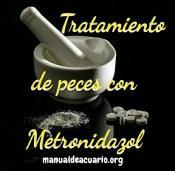 Tratamiento para peces con Metronidazol 1.2