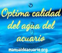 Optima calidad del agua